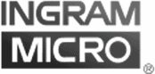 Channel Marketing ingram micro logo